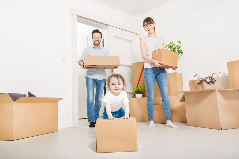 apl-logement-revision